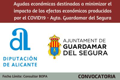 Ayudas económicas destinadas a minimizar el impacto de los efectos económicos producidos por el COVID19 - Guardamar del Segura